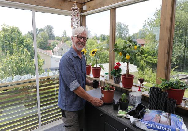 ODLARE. Ute i glasverandan har Anders Wolmar ett sommarkök och här är den perfekta platsen för att pyssla med frön och späda plantor.