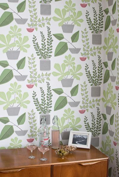 HOUSE PLANTS.Miss Print, Midbec