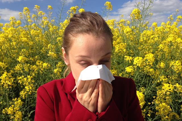 SLIPP ALLERGIN.Det finns receptfria mediciner som lindrar. Numera kan du också vaccinera dig i tablettform mot gräspollen och kvalster.