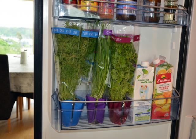 KYLSKÅPSKALLT. Färska örterna dill, persilja och gräslök håller längre om du förvarar dem i kylskåpet. Foto Elgiganten.