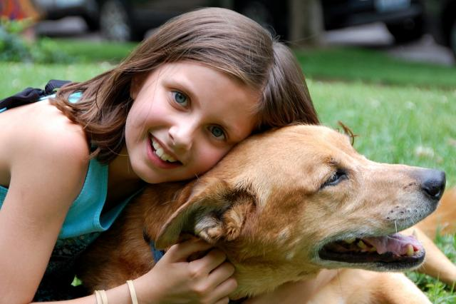 UNDERSÖKT. En ny studie visar att barn som växer upp med hund har 15 procent lägre risk att drabbas av astma när de börjar skolan. Foto Pxabay.